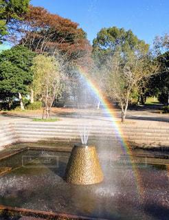 虹の写真・画像素材[1876418]