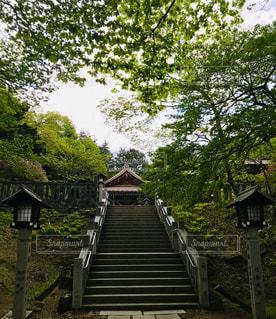 那須温泉神社の写真・画像素材[2148340]