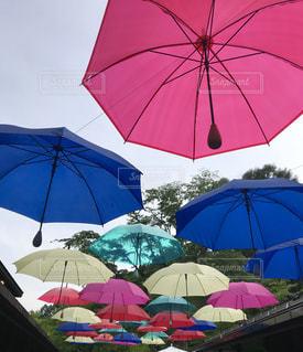 傘,屋外,ライト,軽井沢,アンブレラ,ハルニレテラス,軽井沢アンブレラスカイ2019