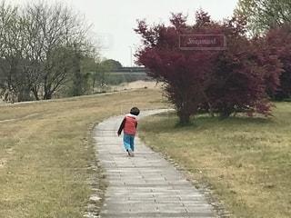 散歩,後姿,河川敷,散歩道,男の子,後ろ姿フォト
