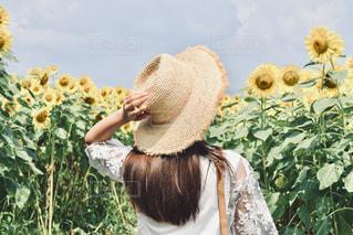 風景,花,夏,ロングヘア,屋外,ひまわり,後ろ姿,帽子,女の子,人物,背中,人,後姿,ポートレート,ハット