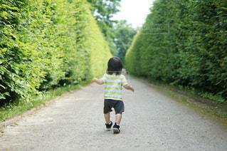 風景,屋外,緑,樹木,人物,人,赤ちゃん,幼児,少年,レジャー,男の子,お散歩,ライフスタイル,フォトジェニック