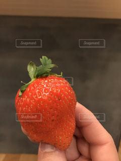 果物を持っている手の写真・画像素材[1789671]