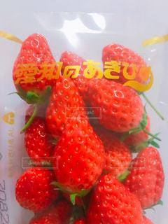 いちご,苺,フルーツ,果物,甘い,愛知,ゆきひめ