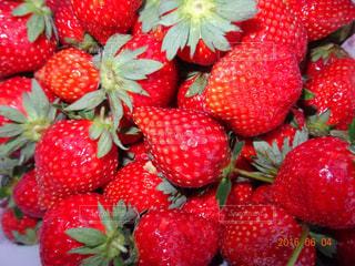 赤,苺,フルーツ,果物,フレッシュ