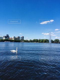 風景,湖,海外,水,水面,ヨーロッパ,外国,噴水,白鳥,ドイツ,海外旅行,ハンブルク,アルスター湖