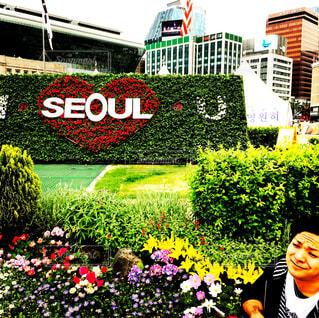 韓国,海外旅行,思い出,ソウル
