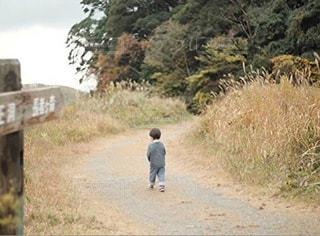 森,後ろ姿,子供,背中,男の子,2歳,冒険,後ろ,背面,成長記録