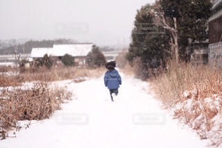 冬の写真・画像素材[2832383]