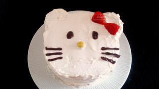猫,ケーキ,ねこ,バレンタイン,手作り,パパに作る