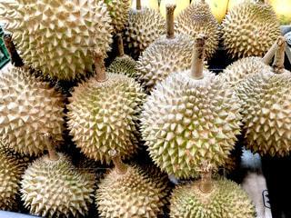 フルーツ,果物,シンガポール,タイ,マレーシア,東南アジア,美味しい,高級,臭い,ドリアン,高い,くさい,王様,におい,フルーツの王様,強烈,悪魔のフルーツ