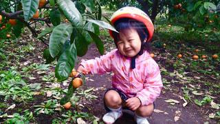 東京,葉,女の子,オレンジ,フルーツ,果物,笑顔,みかん,世田谷区,狩り,みかん狩り