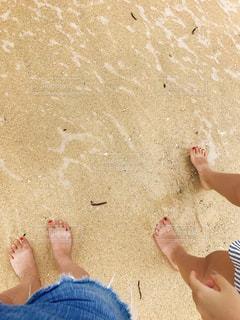 ビーチの写真・画像素材[1798664]