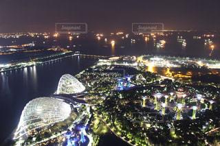 夜景,樹木,シンガポール,海外旅行,植物園,ガーデンズバイザベイ
