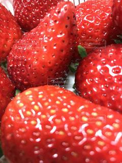 食べ物,赤,いちご,フルーツ,果物,果実