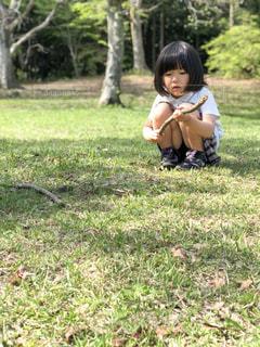 風景,屋外,晴天,女の子,少女,樹木,人物,人,幼児,草木,半袖