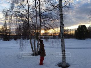 自然,風景,冬,雪,スウェーデン,sweden,ボーデン,boden