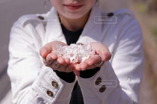 手にいっぱいの幸せの桜の写真・画像素材[1971994]