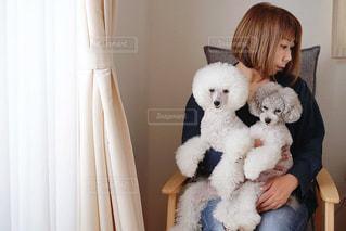 ワタシと犬フォトの写真・画像素材[2010022]