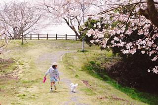 女の子と犬フォト♫の写真・画像素材[2012728]