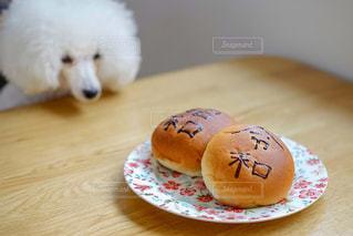 令和あんぱんと犬の写真・画像素材[2120525]