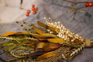 果物の一部の写真・画像素材[2833293]
