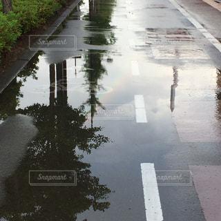 雨,虹,水たまり,歩道,雨上がり,梅雨,天気,雨の日