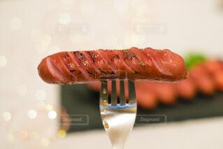食事,屋内,料理,ソーセージ,お肉,夕飯,ジョンソンヴィル