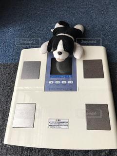 体重計の写真・画像素材[2323186]