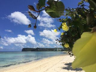 自然,空,ビーチ,海岸,グアム,リゾート,海外旅行,熱帯