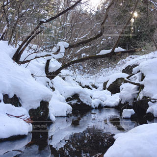 雪の山の写真・画像素材[1807367]
