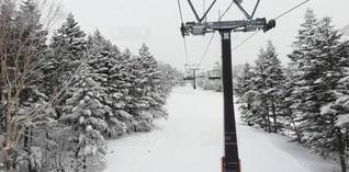 アウトドア,スポーツ,雪,人物,スキー,スノボ,ゲレンデ,レジャー,スノーボード