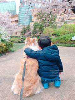 仲良しの写真・画像素材[2014379]