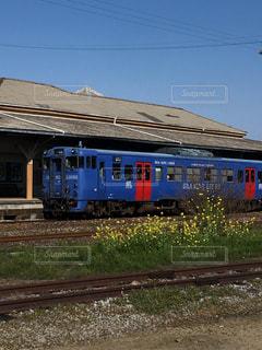 花,電車,青,黄色,菜の花,草,イエロー,鉄道,黄,yellow