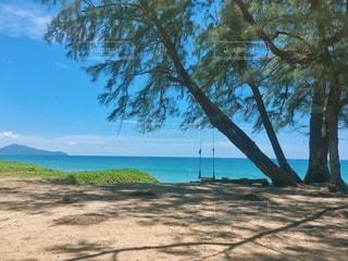 海,空,海外,青空,砂浜,ブランコ,旅行,旅,タイ,プーケット,海外旅行,ハネムーン,プーケット島