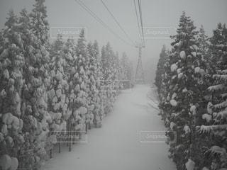蔵王スキー場リフトの写真・画像素材[1813548]