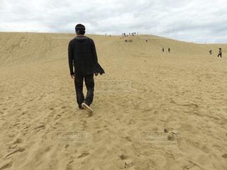 男性,後ろ姿,人物,後姿,旅行,砂丘,鳥取砂丘