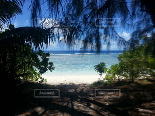 自然,海,夏,海外,ビーチ,海岸,アメリカ,旅行,グアム,海外旅行