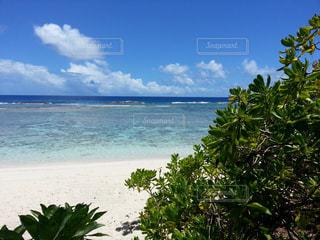 自然,海,夏,海外,ビーチ,海岸,アメリカ,旅行,グアム,海外旅行,休暇
