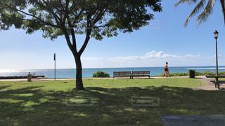 風景,アメリカ,景色,旅行,ハワイ,海外旅行,インスタ映え