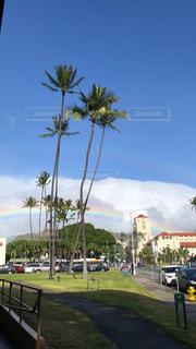 自然,夏,虹,アメリカ,景色,ハワイ,海外旅行,休暇,インスタ映え