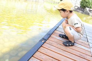 自然,公園,夏,橋,屋外,湖,晴れ,青空,水,散歩,川,景色,子供,レジャー,男の子,天気,お散歩,水際,ライフスタイル,お出かけ