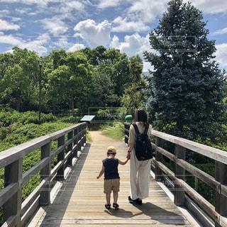 女性,自然,空,夏,橋,木,屋外,植物,雲,親子,晴れ,青空,散歩,山,景色,子供,植木,レジャー,男の子,天気,お散歩,ライフスタイル,お出かけ