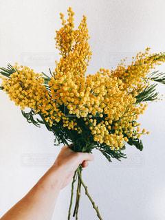 花,花束,flower,ミモザ