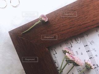 自然,花,木目,テキスト,ヘア,ヘアケア,メロディー