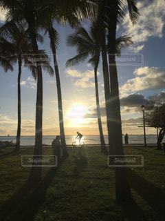 自転車,ハワイ,サンセット,海外旅行,ホノルル