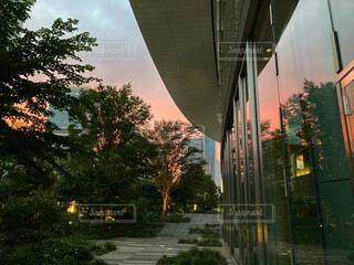 ガラスに反射する夕暮れの写真・画像素材[4848921]