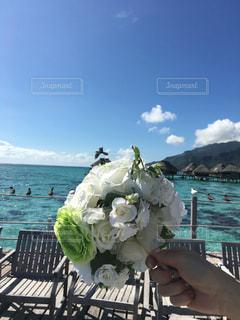 海,空,鳥,海外,ビーチ,旅行,ブーケ,リゾート,海外旅行,ハネムーン,タヒチ,眺め,モーレア島