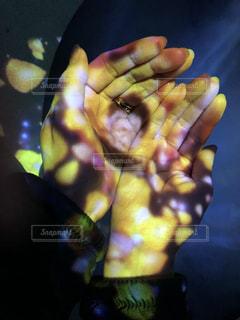 黄色,手,アート,花びら,光,イエロー,渦,フォトジェニック,ネイキッド,フラワーズバイネイキッド,FLOWERS BY NAKED