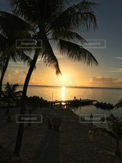 海外,ビーチ,結婚式,日没,旅行,ヤシの木,リゾート,ハネムーン,タヒチ,夕暮,眺め,モーレア島,ランセット